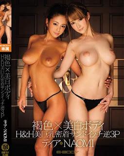 EBOD-511 Brown × Whitening Body H & H