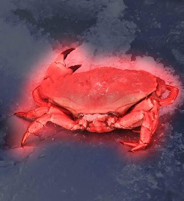 crabe, rouge, mutant
