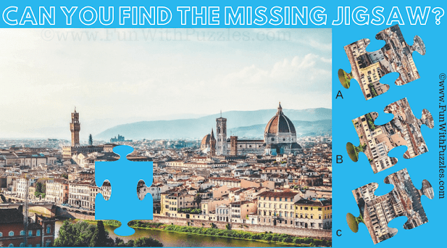 In this Jigsaw Puzzle you have to find missing jigsaw piece from the given puzzle image