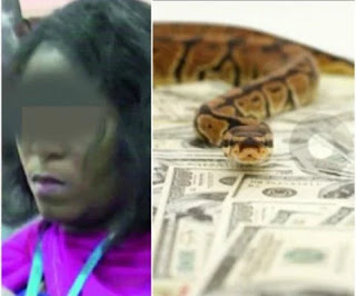 News: EXCLUSIVE! 'Snake girl' accused of swallowing N36m in JAMB office breaks silence