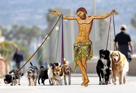 Funny Jesus Dog Walking Religious Picture