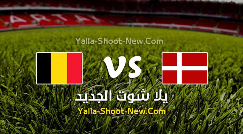 مباراة الدنمارك وبلجيكا