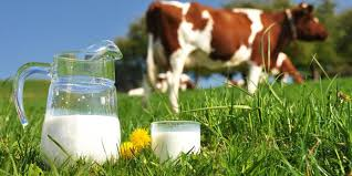Benefits of Milk for Health and Beauty - healthy t1ps