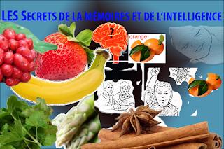 Meilleurs aliment à mémoire,intelligence