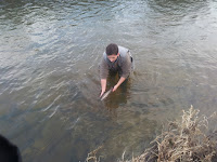 Releasing trout