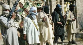 US representative not sure if Afghan Taliban's want peace