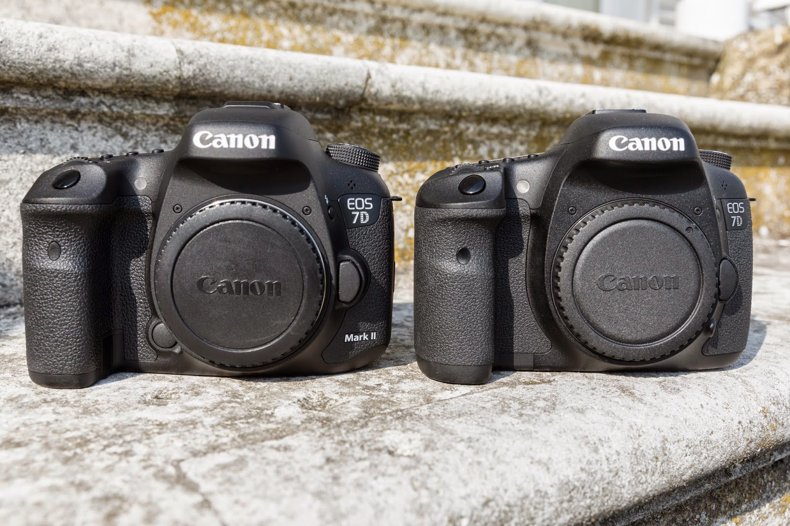 Canon EOS 7D Mark II – Hands-on and First Impressions - Park Cameras ...