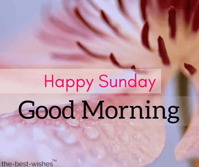 happy sunday rainy morning images