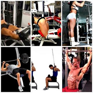 Ejercicios hipertrofia muscular
