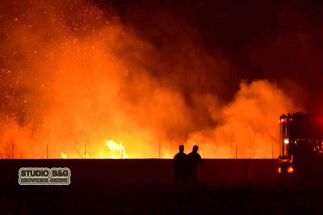 Πυρκαγιά στον υποσταθμό της ΔΕΗ στη Δαλαμανάρα Άργους