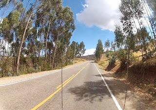 Árvores enfeitando a paisagem no caminho para Ollantaytambo / Peru.