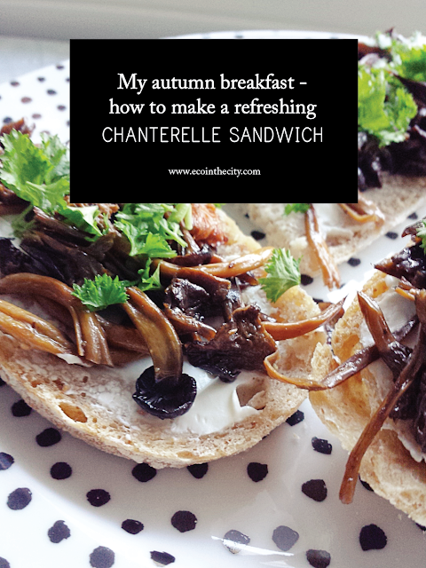My autumn breakfast - how to make a chanterelle sandwich