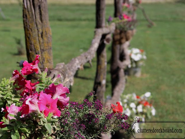 My Rustic Fence Hanging Baskets