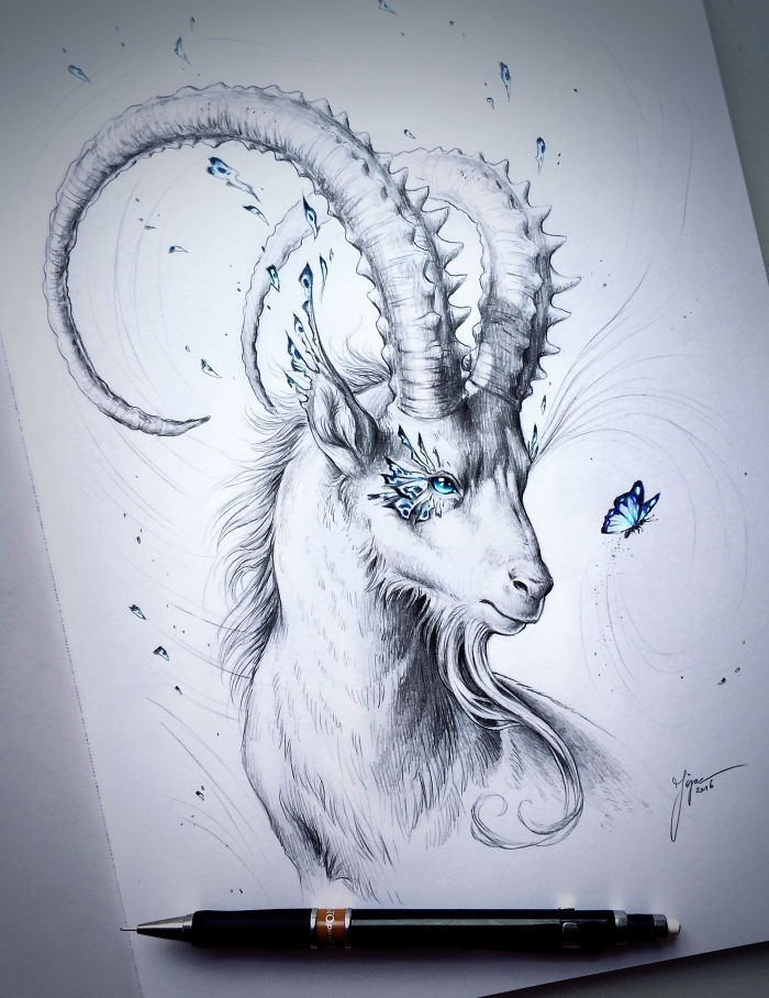 01-Capricorn-Jonas-Jödicke-jojoesart-Fantasy-Animal-Drawings-with-Souls-of-Nature-www-designstack-co