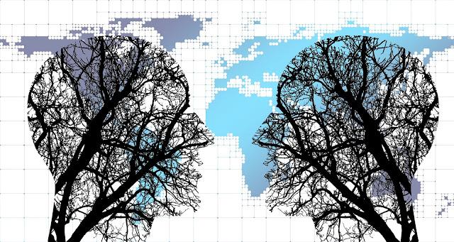 impacto social gestión colaborativa tejeredes