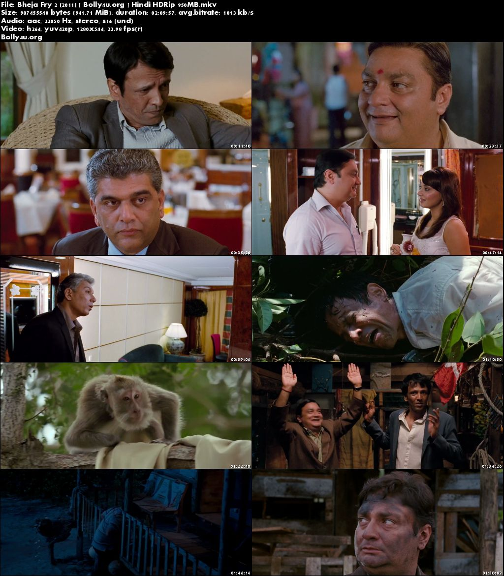 Bheja Fry 2 (2011) HDRip 950Mb Full Movie Hindi 720p Download