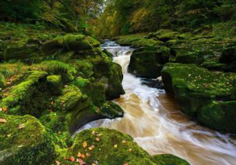 Bolton Strid Misteri Sungai Pengisap Manusia di Inggris