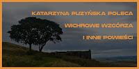 http://mechaniczna-kulturacja.blogspot.com/2016/01/co-katarzyna-puzynska-poleca.html