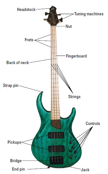 Labelled parts of a bass guitar