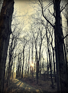 http://grantedgrace.blogspot.com/2018/03/will-you-curse-or-worship.html