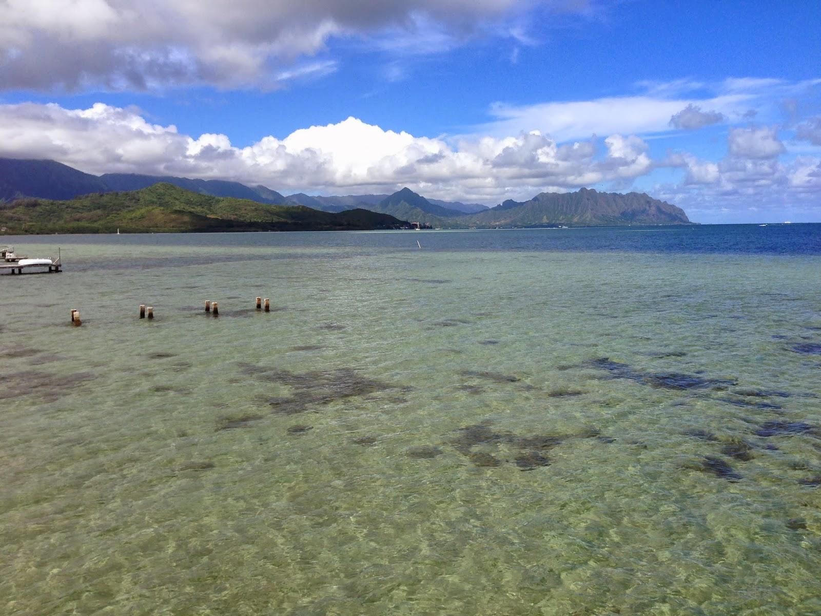 Gilligans Kaneohe Island