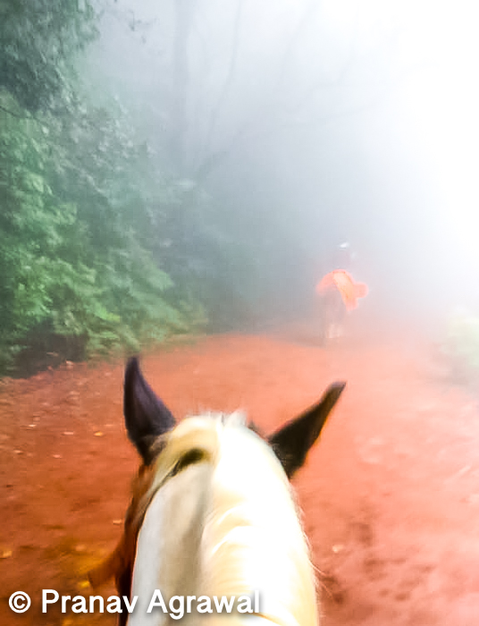You can explore the places of Matheran on foot or you can hire a horse if you want to treat yourself a little royal, I chose to treat myself royal as I was too tired due to driving continuously for 2 hours. You can get to hire horse at the entrance of the hill station.