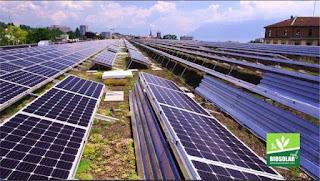 renewable energy meets biodiversity