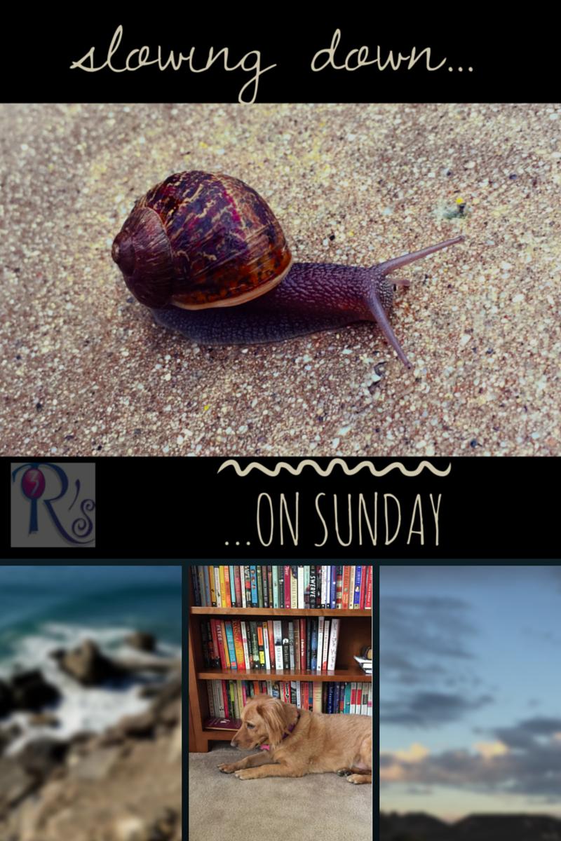 Sunday Slowdown, The 3 Rs Blog, 1/25/2015
