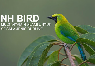NH BIRD Multivitamin Segala Jenis Burung