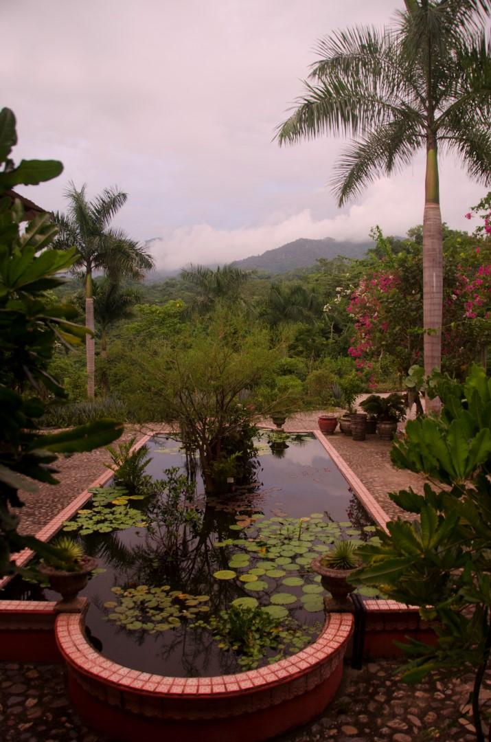 Mexico and beyond laura 39 s photo journey puerto vallarta - Puerto vallarta botanical gardens ...