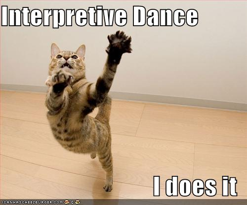 Funny Happy Dance Meme : Funny cat dance all