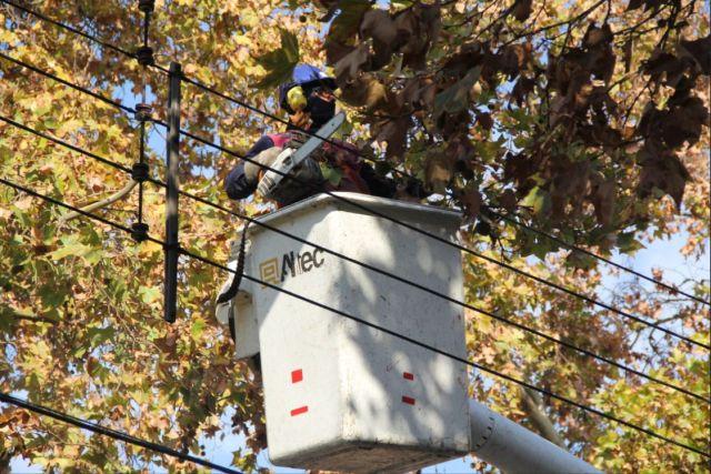 SEC Los Lagos instruye a eléctricas ante alerta metereológica en la Región