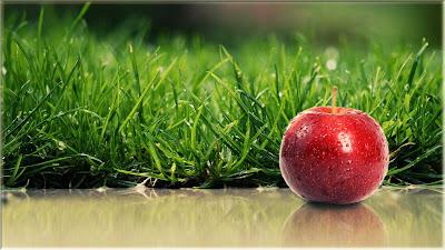 wallpaper buah apel segar