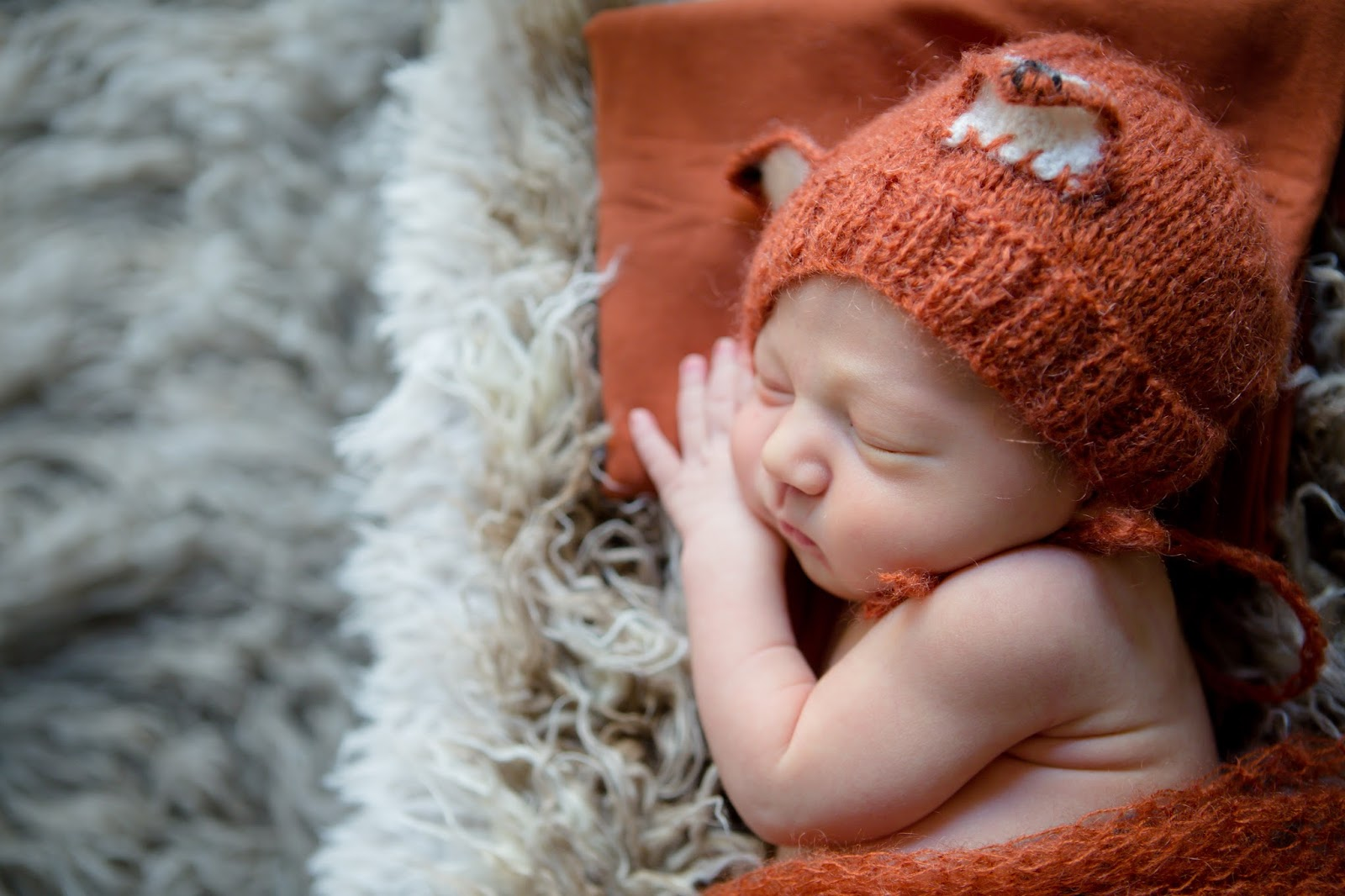 newborn dressed as a fox