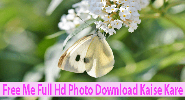 Free me full hd photos download kaise kare