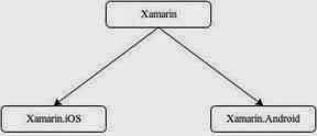 Divisions-of-Xamarin