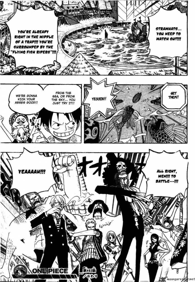 One Piece 492