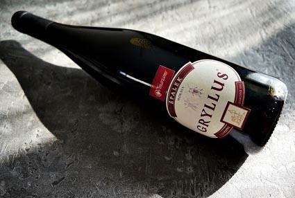 wino na grilla - spalek gryllus