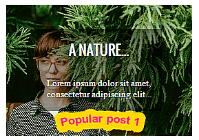 Top 2 popular post widget for blog