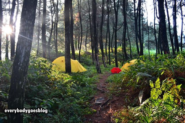 Camping ground tenjolaya bogor
