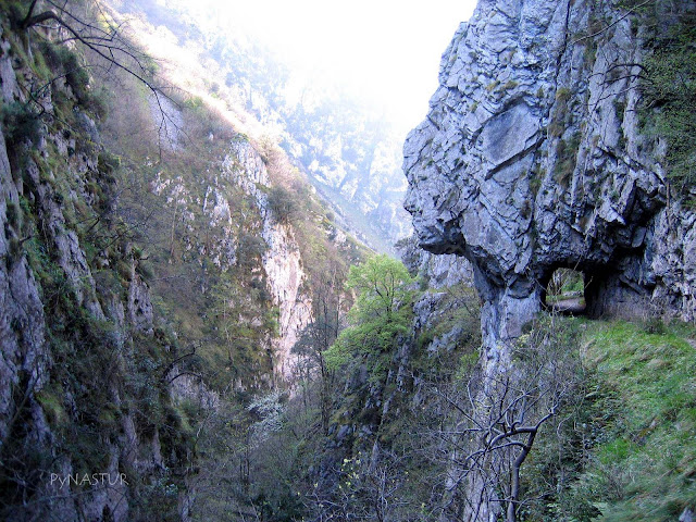 The Xanas Gorge Asturias Spain