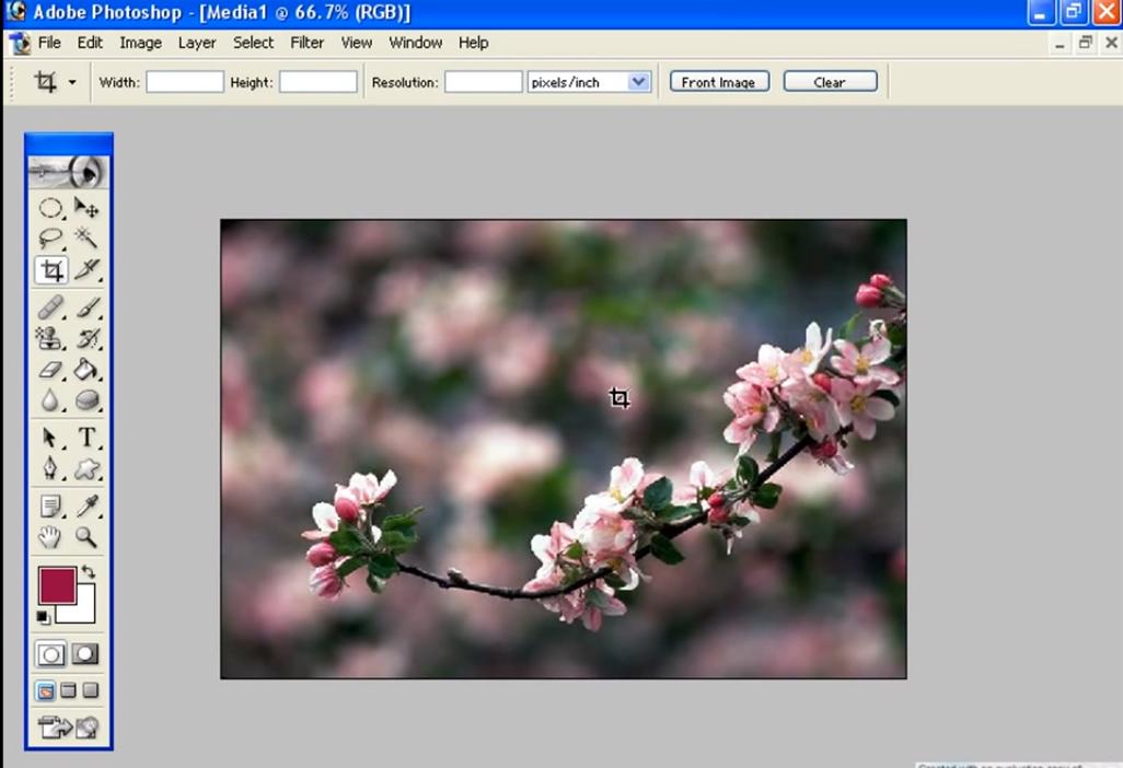 Ps Malayalam for Adobe Photoshop Malayalam Video Tutorial