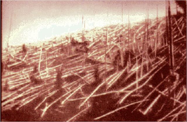 Cây cối ở Tunguska sau sự kiện đó, ảnh được chụp vào năm 1927 sau khi các nhà khoa học của Nga cuối cùng cũng có thể đến được hiện trường. Credit : Đoàn thám hiểm dẫn đầu bởi Leonid Kulik của Viện Hàn lâm Khoa học Liên Xô.