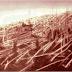Ngày này năm xưa : Vụ nổ Tunguska ở Nga