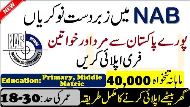 NAB New Jobs 2020 National Accountability Bureau Jobs