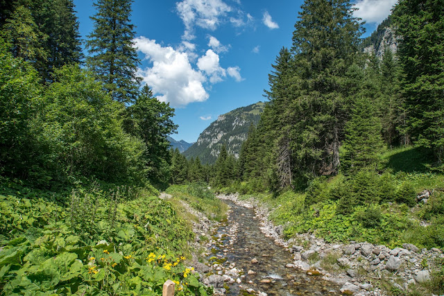 Bergtour Rappenstein von Steg  Wandern Fürstentum Liechtenstein 15