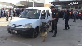 """تارودانت24 إجراءات أمنية تواكب """"بوناني"""" في عاصمة سوس"""