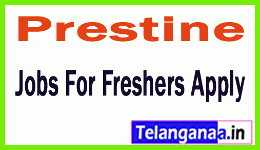 Prestine Recruitment Jobs For Freshers Apply