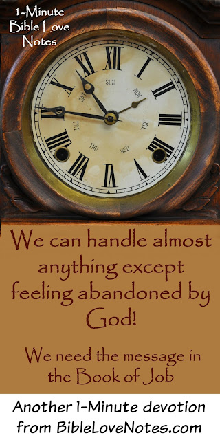 Worse than suffering is feeling abandoned by God -Message of the Book of Job