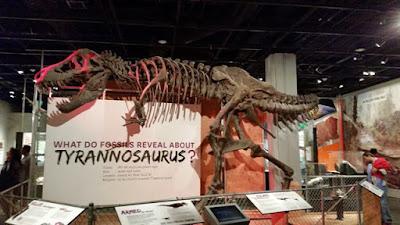 Esqueleto de dinosaurio en el Museo Nacional de Historia Natural